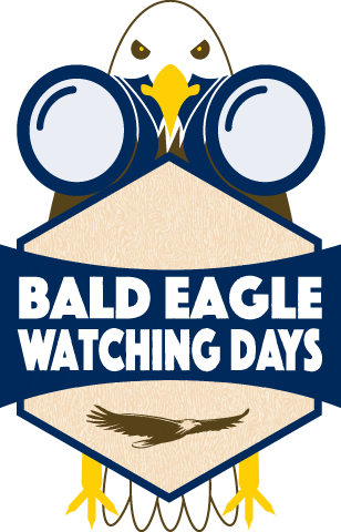 Bald Eagle Watching Days